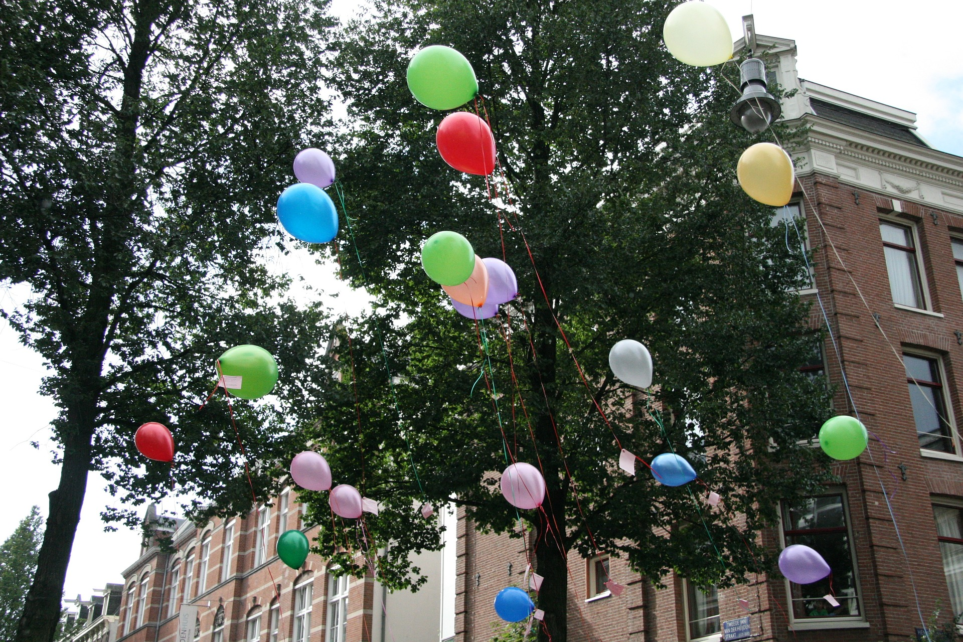 party neighbourhood celebration balloon colour celebrate good happy.jpg